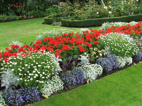 Грунт для садовых растений и цветов